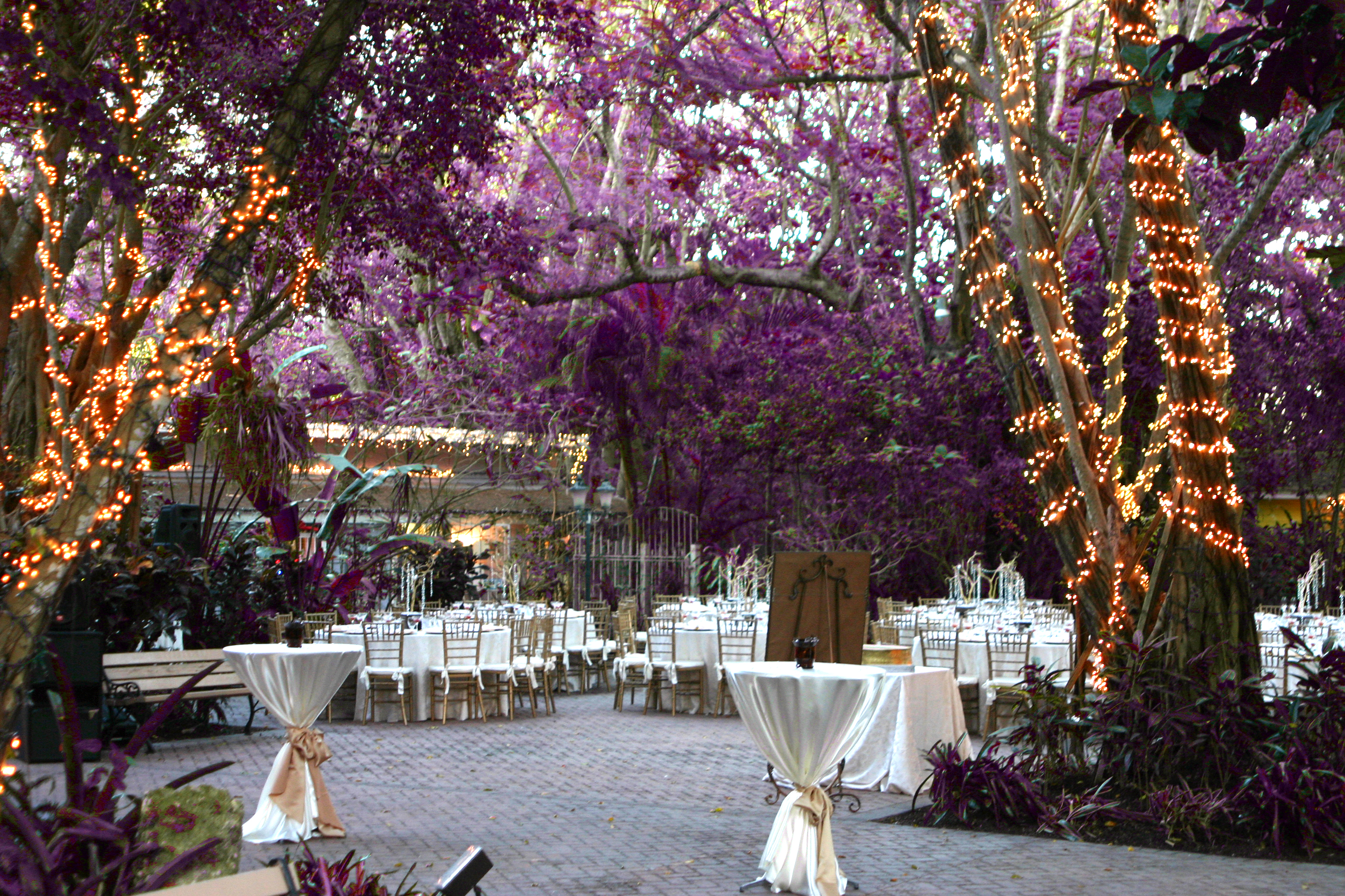 Outdoor Park Or Indoor Room For Wedding Ceremony: 7 South Florida Wedding Venues To Keep On Your Radar