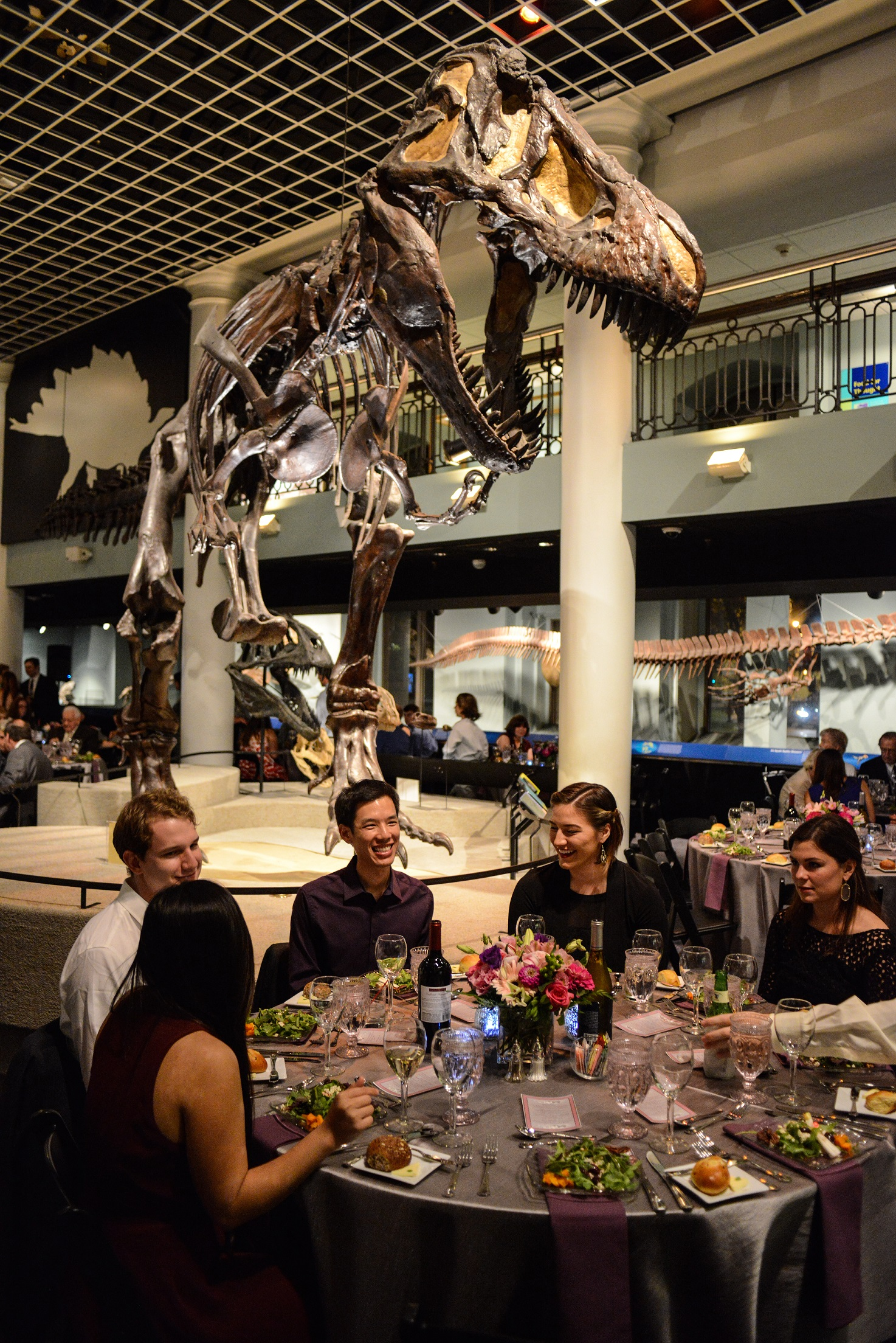 Academy Of Natural Sciences Wedding Venue In Philadelphia