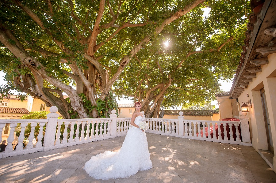 The Addison Wedding Venue In South Florida Partyspace