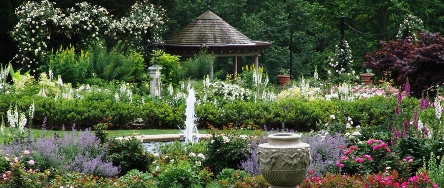 Morris Arboretum Image 23