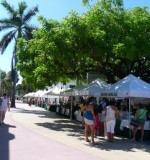 Vinos in the Grove Preview