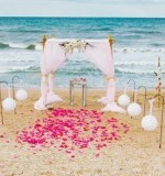 Wedding Bells and Seashells Preview