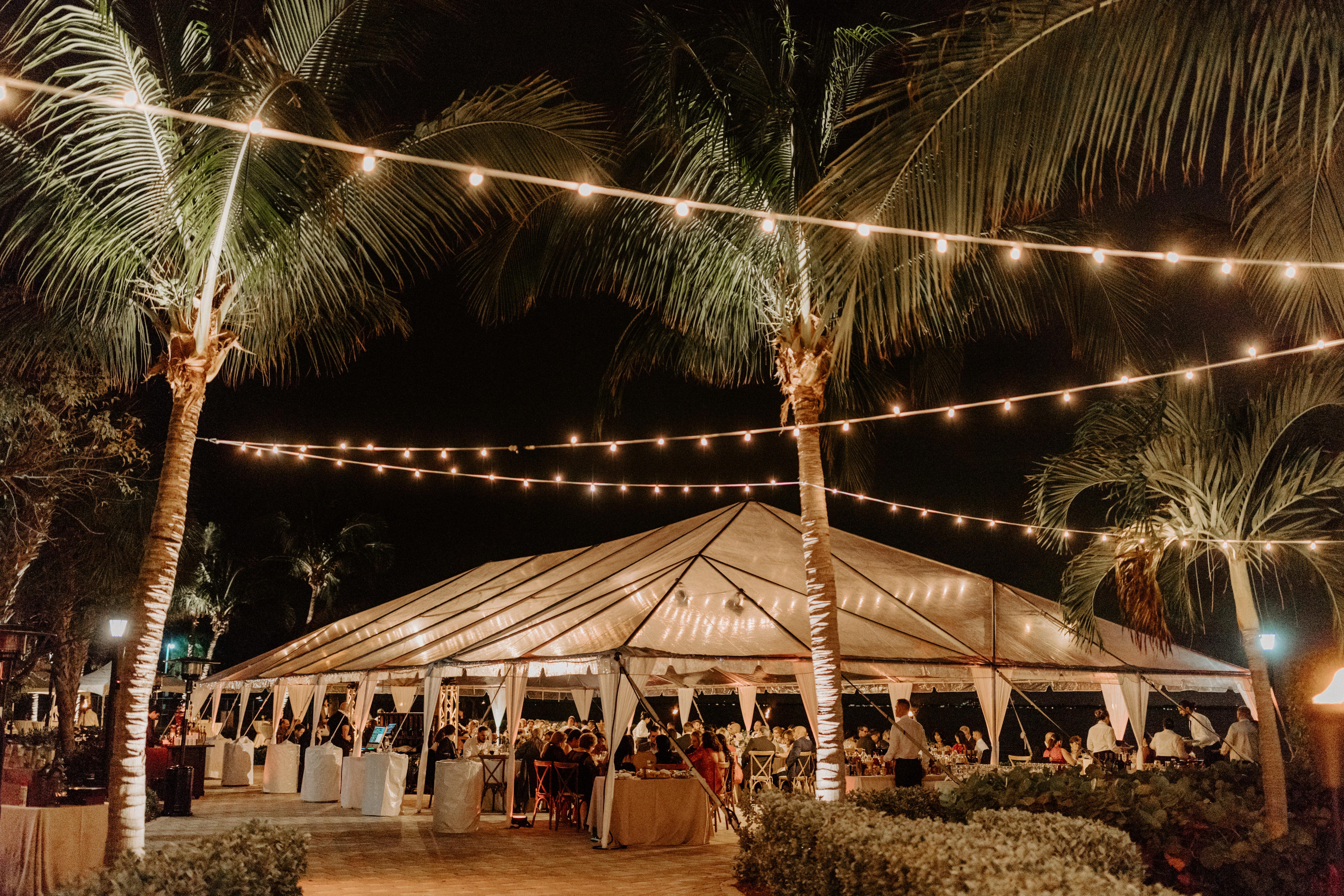 Sunset Cove Miami Seaquarium Wedding | Wedding Stuff ...  |Sunset Cove Miami